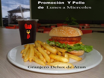 vign3_plato_atun_con_y_pollo