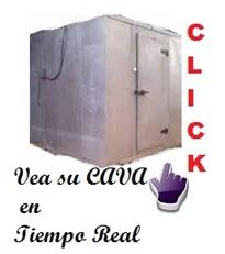 vign_tiempo_real_cavas